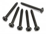 #Z573 TP. BINDER HEAD SCREW M3x25mm (6pcs)